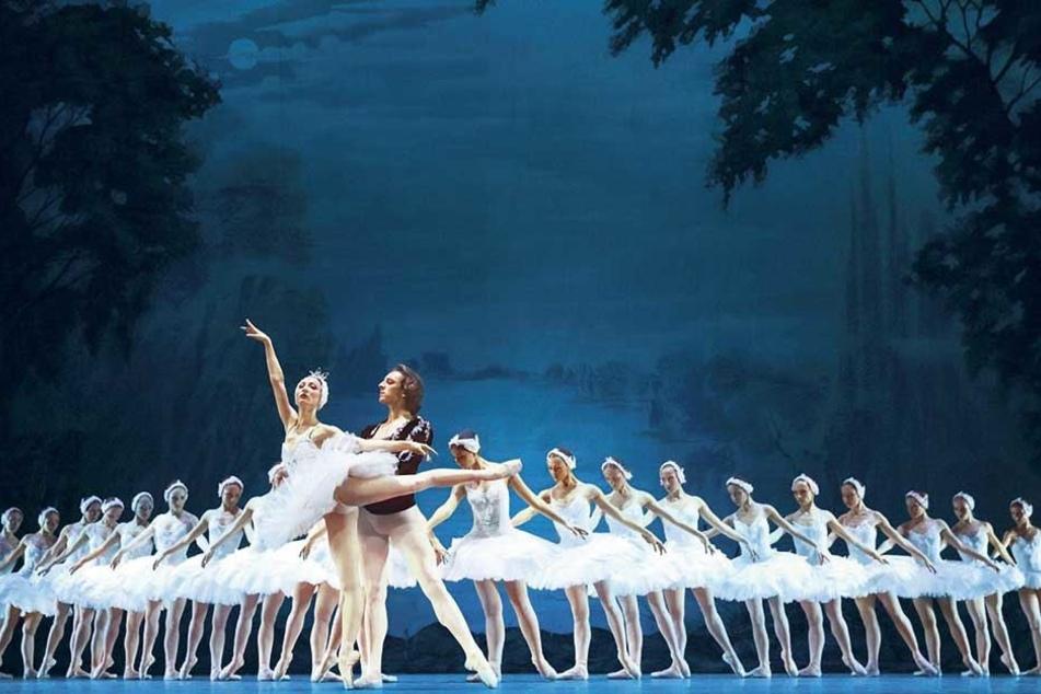 """Die Künstler suchen Unterstützer, damit die """"Schwanensee""""-Aufführung in Chemnitz so schick wie hier beim Staatlichen Russischen Ballett aus Moskau über die Bühne gehen kann."""