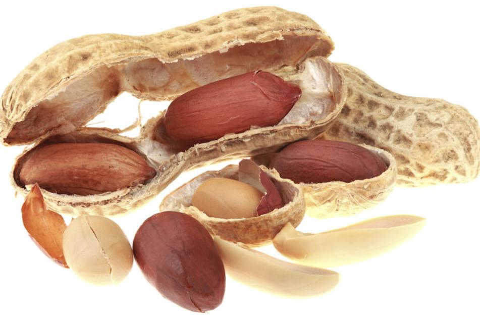 Auch in den roten Häutchen von Erdnüssen ist OPC enthalten.