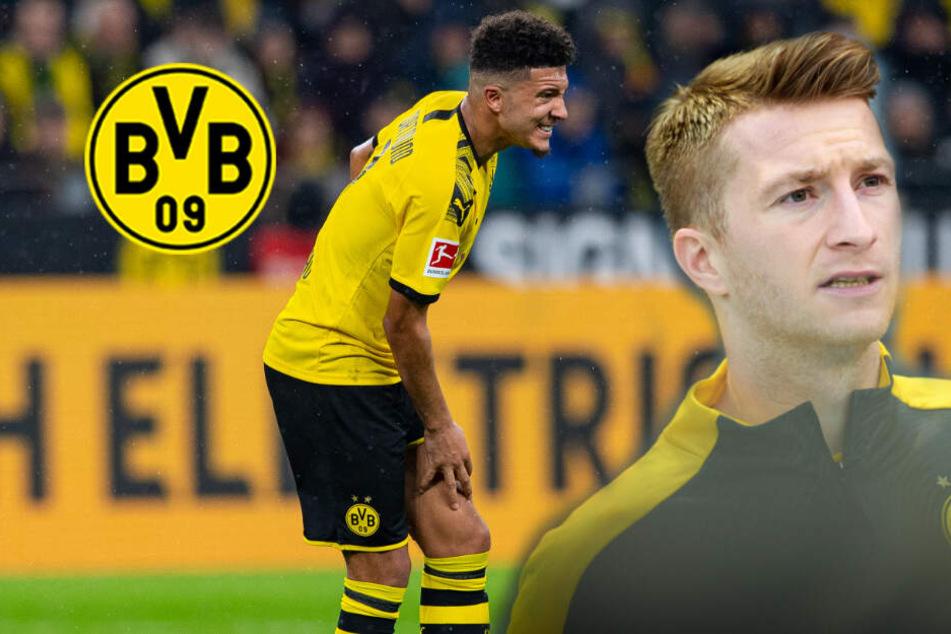 Schock beim BVB: Kapitän Marco Reus fällt in Hoffenheim aus, Sancho-Einsatz fraglich