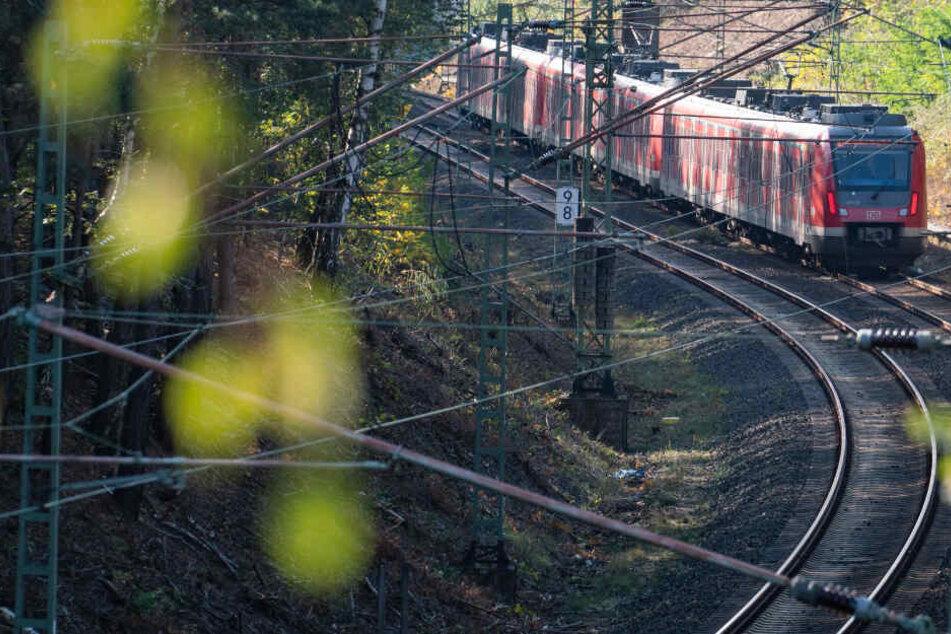 Der Zugführer konnte die Bahn noch rechtzeitig stoppen und rettete dem aufs Gleis gestürzten Mann wohl das Leben. (Symbolbild)