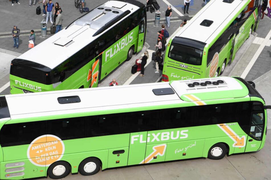 Flixbus übernimmt Konkurrenten und baut sein Geschäft aus. (Symbolbild)