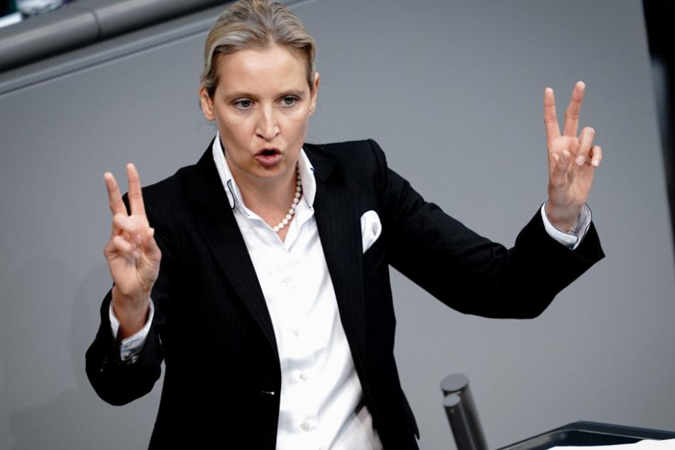 Die AfD-Fraktionsvorsitzende Alice Weidel (42) hat keine allzu hohe Meinung von Bundeskanzlerin Merkel.