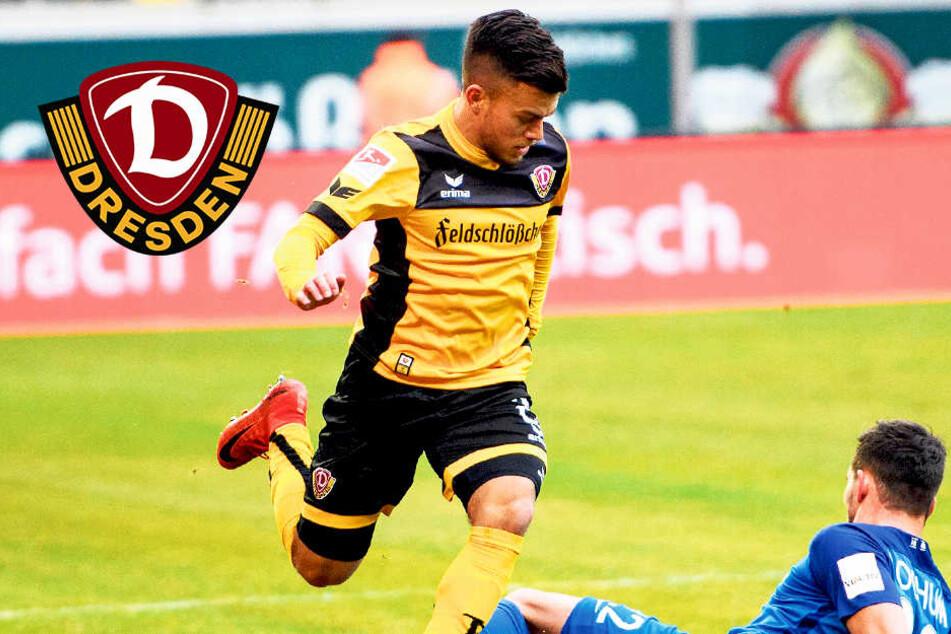Dynamo hat einen der Kleinsten in der 2. Liga: Aber Horvath beißt sich durch!