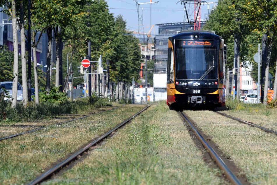 Kontrolleure fanden den Mann in einer Bahn der Linie S2. (Archiv)