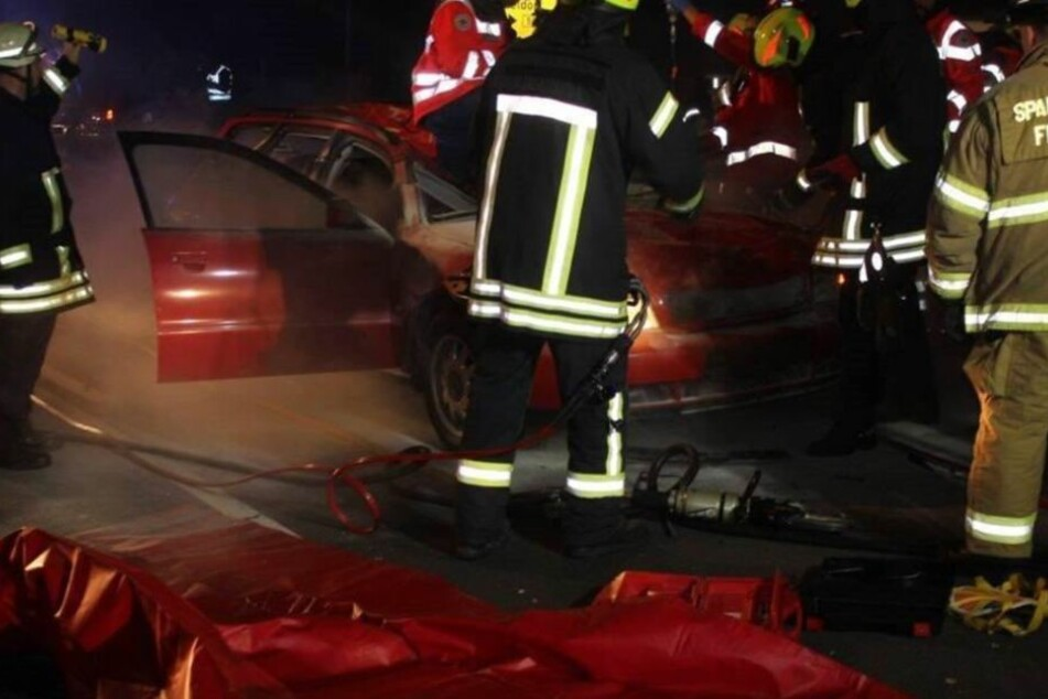 Der Autofahrer wurde schwer verletzt.