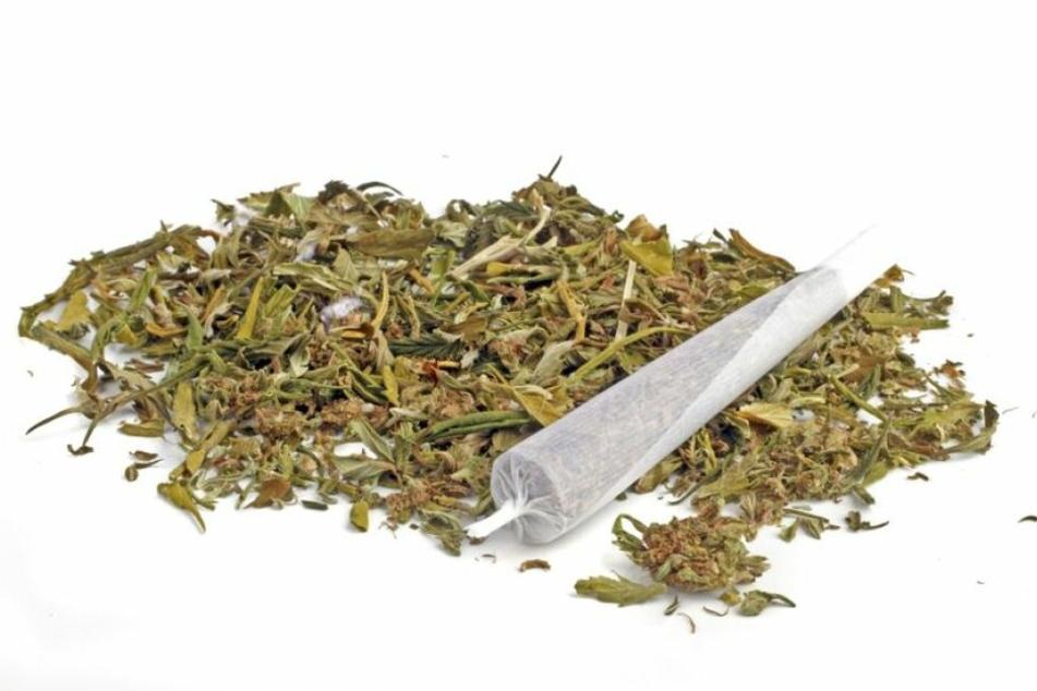 Die Polizei stellte in der Dresdner Wohnung rund 1,2 Kilo Marihuana sicher. (Symbolbild)