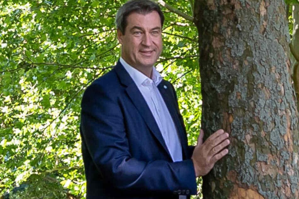 Klimaschutz in Bayern: Das sind Markus Söders Pläne