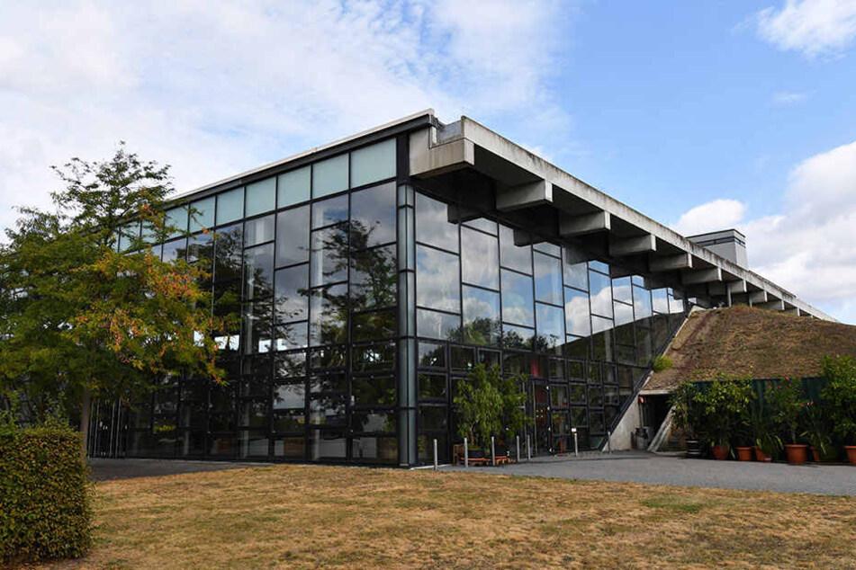 Wie das Rathaus auf PNN-Anfrage mitteilte, besteht Sanierungsbedarf an der Dachdichtung und der Hallenkonstruktion.