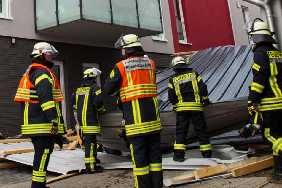 """Frankfurt: Orkan """"Sabine"""" in Frankfurt und Hessen: Schulen geschlossen, Feuerwehr im Dauer-Einsatz"""