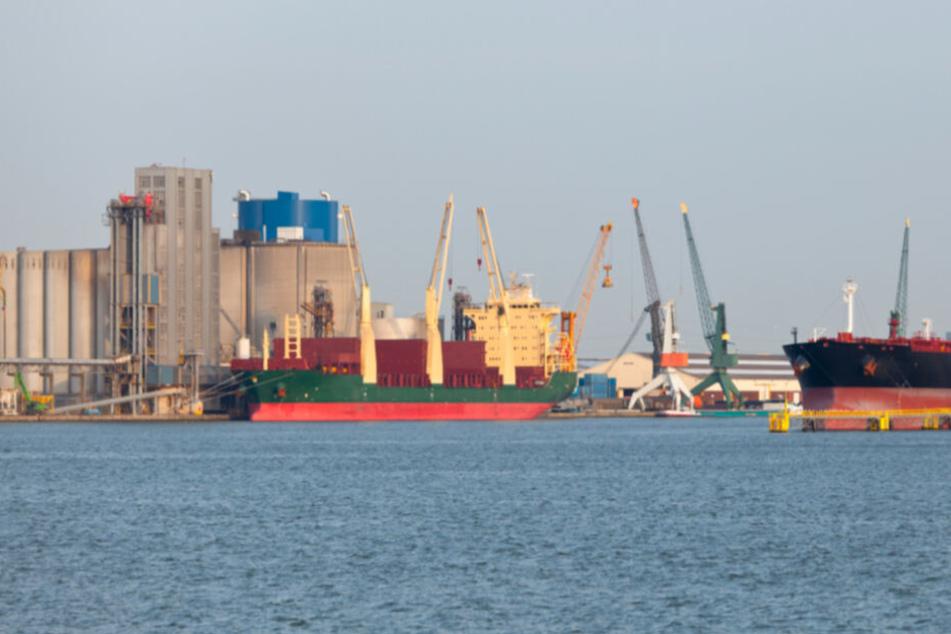 Im Hafen von Antwerpen wurden die Fahnder fündig: 1,2 Tonnen Kokain wurden sichergestellt. (Archivbild)