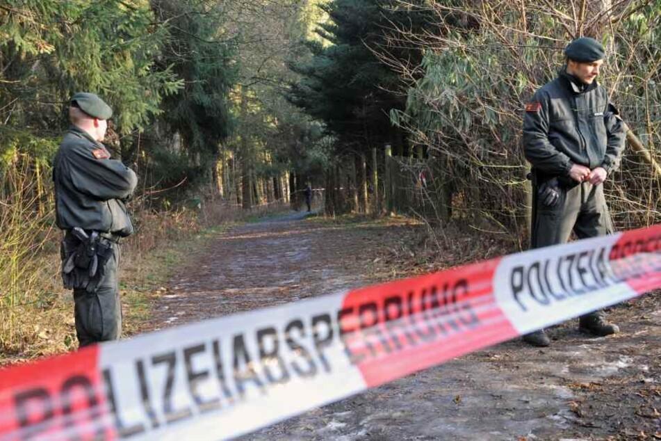 Grausiger Fund: Pilzsammler entdeckt im Wald menschliche Knochen