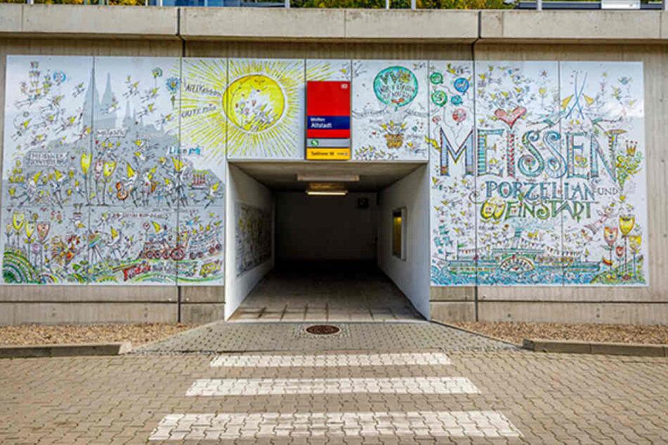 Auf 53 Quadratmetern flattern neuerdings Vögel am Haltepunkt Meißen-Altstadt.