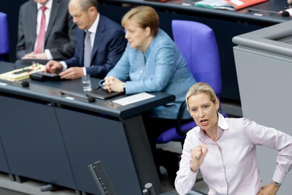 Alice Weidel (vorne rechts) forderte den Rücktritt von Bundeskanzlerin Angela Merkel.