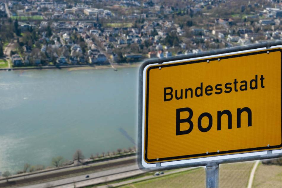 Der niedrige Pegelstand des Rheins fördert immer mehr Kriegsmunition zutage.