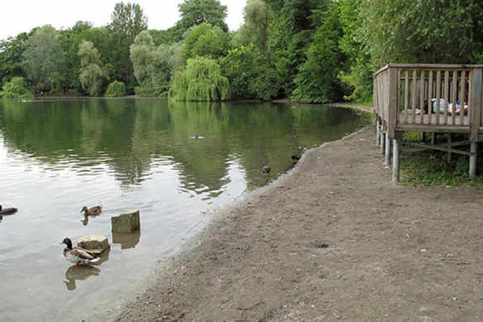 Viele Stege und Uferpromenaden haben schon gar keine Wasseranbindung mehr.