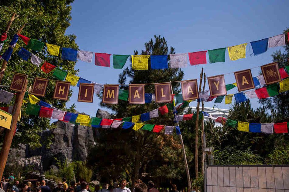 Ganz wie im echten Himalaya: Tibetische Gebetsflaggen säumen die Anlage.