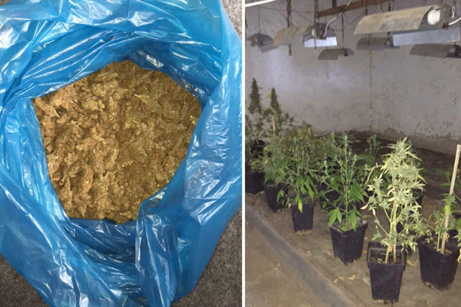 Die Beamten beschlagnahmten insgesamt 6,7 Kilogramm Marihuana.