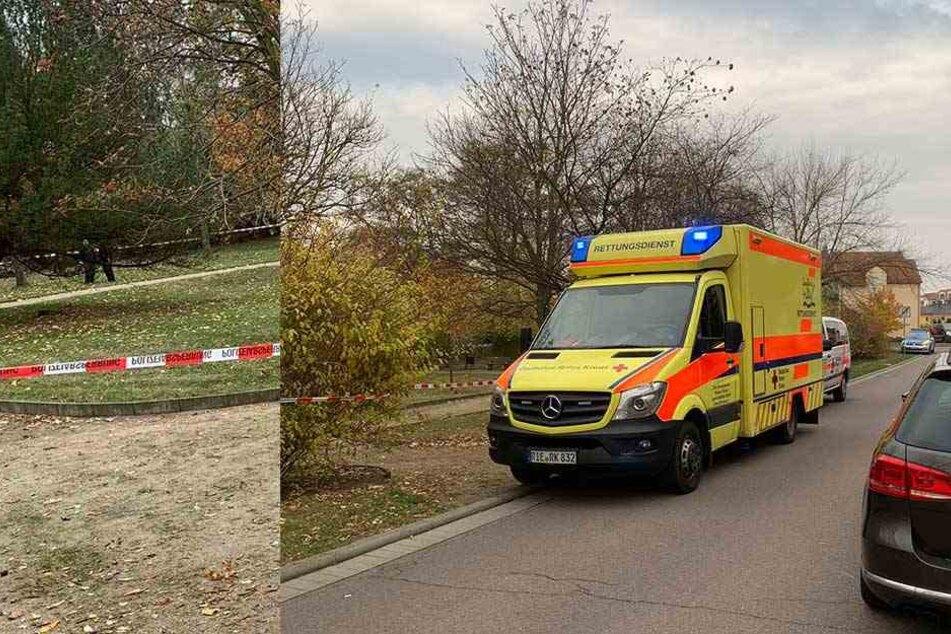 Leiche von 26-Jährigem in Park gefunden