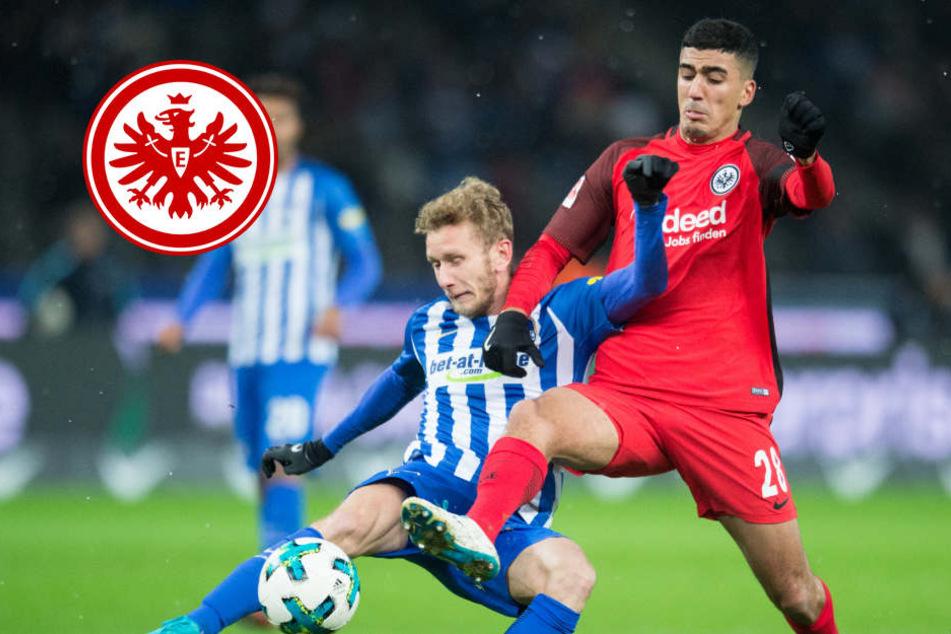 Auswärtsmacht vor Kracher-Heimspiel: Eintracht schon heiß auf Bayern