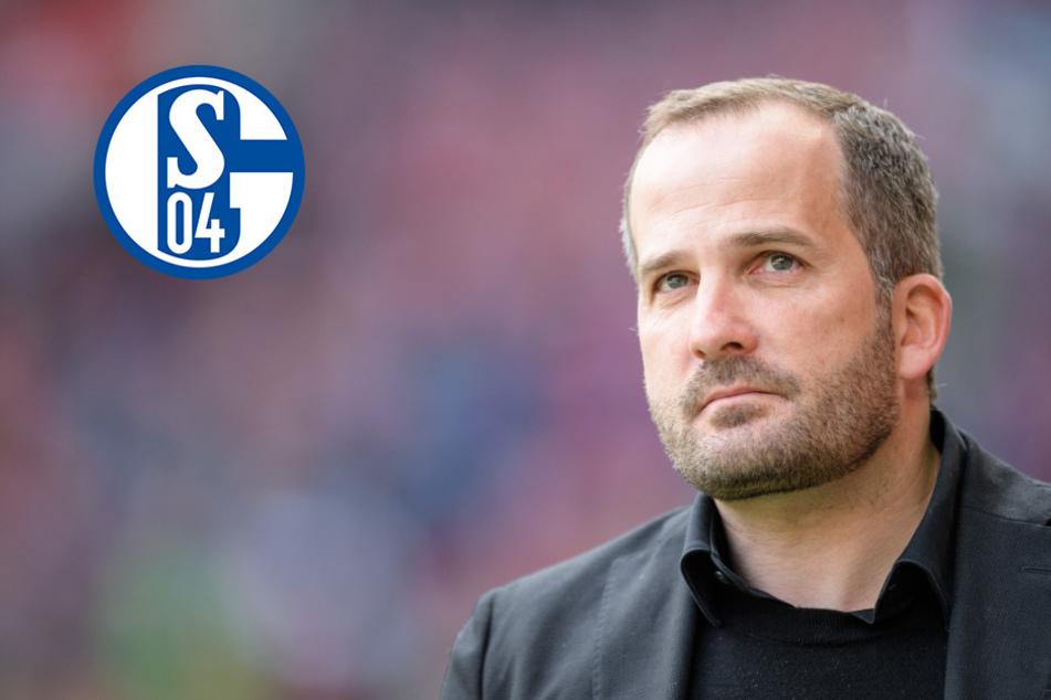 Schalke 04 holt Baum: Wagner-Nachfolge geklärt!