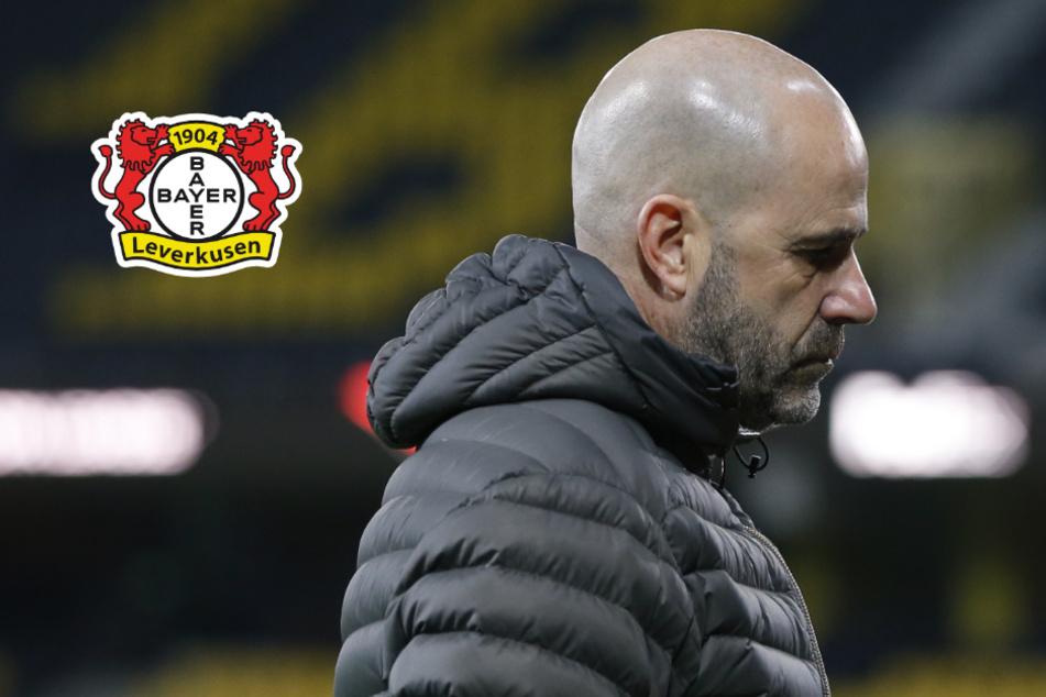 """Leverkusens Bosz nach irrem Pleite-Spiel mit heftigen Worten: """"Lieber kein Trainer von Bayer 04 sein"""""""