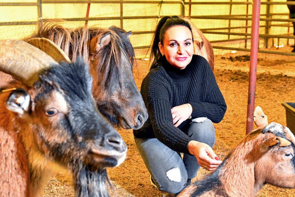 Mutter Katharina kümmert sich um ihre Ziegenbande: Dazu gehören Panda, Bella, Rocky, Peter und Nickels.