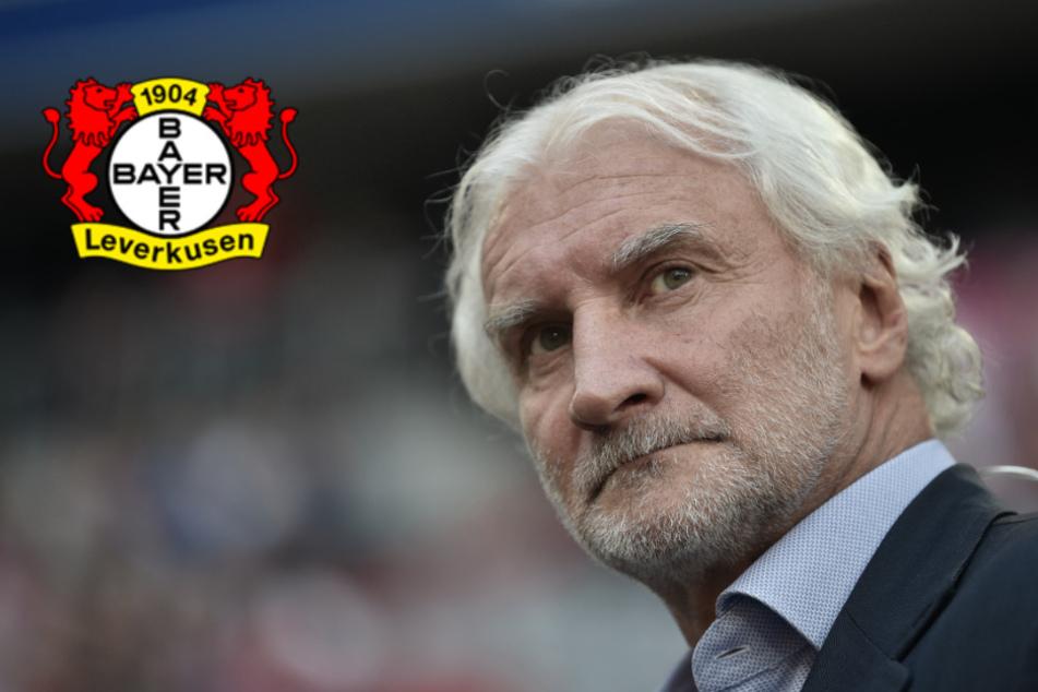 """Völler platzt der Kragen: Bayer-Boss geht auf Nationalverband los! """"Eine Sauerei"""""""