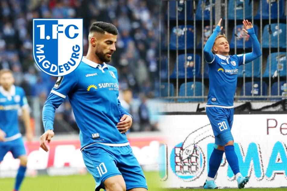 Magdeburg-Hammer: FCM stellt Sören Bertram und Jürgen Gjasula frei!