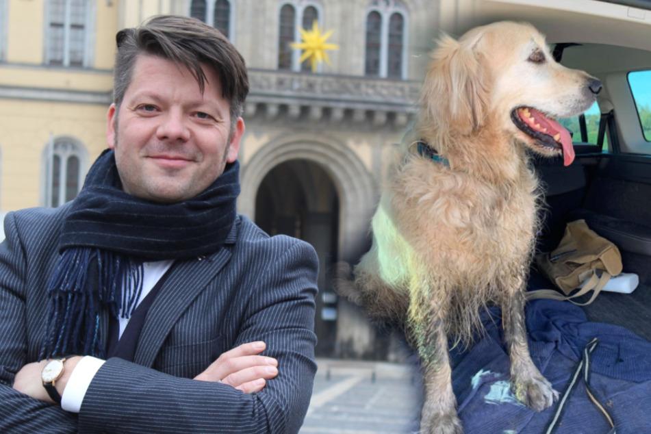 Wuff! Bürgermeister sucht nach Hunde-Besitzer und hat Erfolg