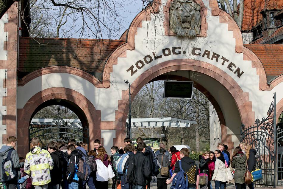 Direkt gegenüber vom Leipziger Zoo machte sich der Dieb an abgestellten Fahrrädern zu schaffen. (Archiv)