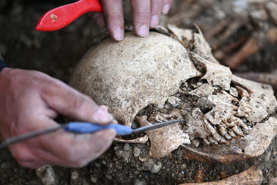 Archäologen decken auf: So wurden Menschen am Bodensee hingerichtet