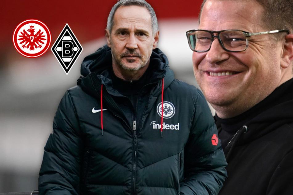 Nach Rose-Abgang zum BVB: So will Gladbach an Eintracht-Coach Adi Hütter ran