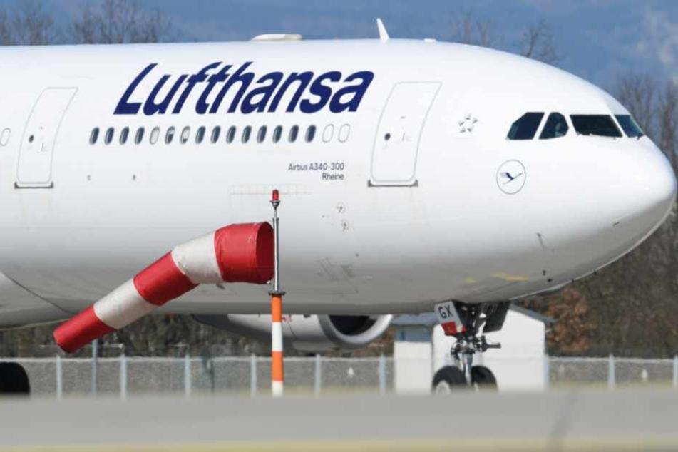 """Frankfurt: Lufthansa-Passagierjet wird zum Frachtflugzeug und landet mit """"heißer Ware"""""""