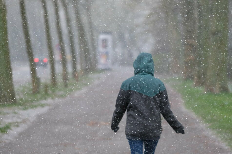Sachsen war im Frühjahr 2021 das kälteste Bundesland