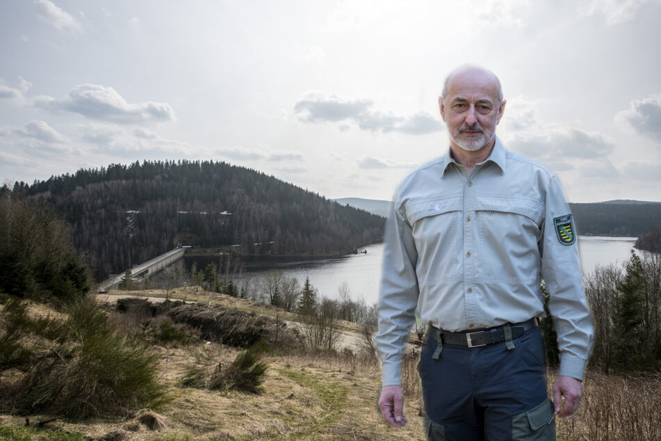 Chemnitz: Osterspaziergang: Forst-Chef leitet die Chemnitzer ins Erzgebirge um