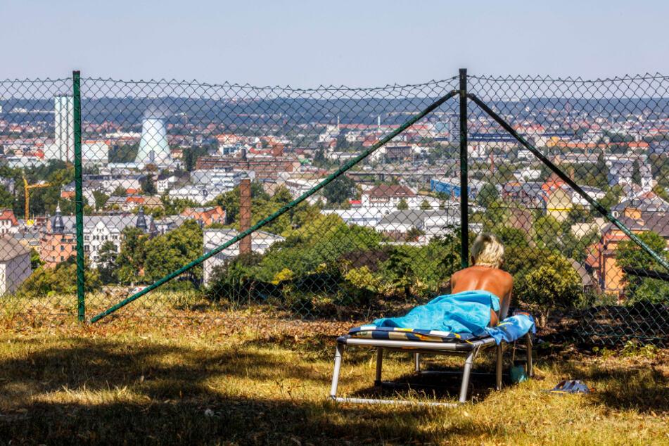 Mit herrlichem Blick auf Dresden kann sich in Dölzschen aktuell nur noch gesonnt werden.