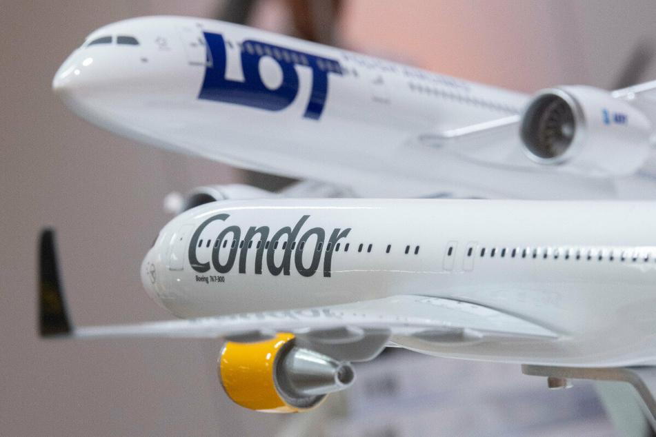 Die polnische Fluglinie LOT verzichtet auf den geplanten Kauf des Ferienfliegers Condor.