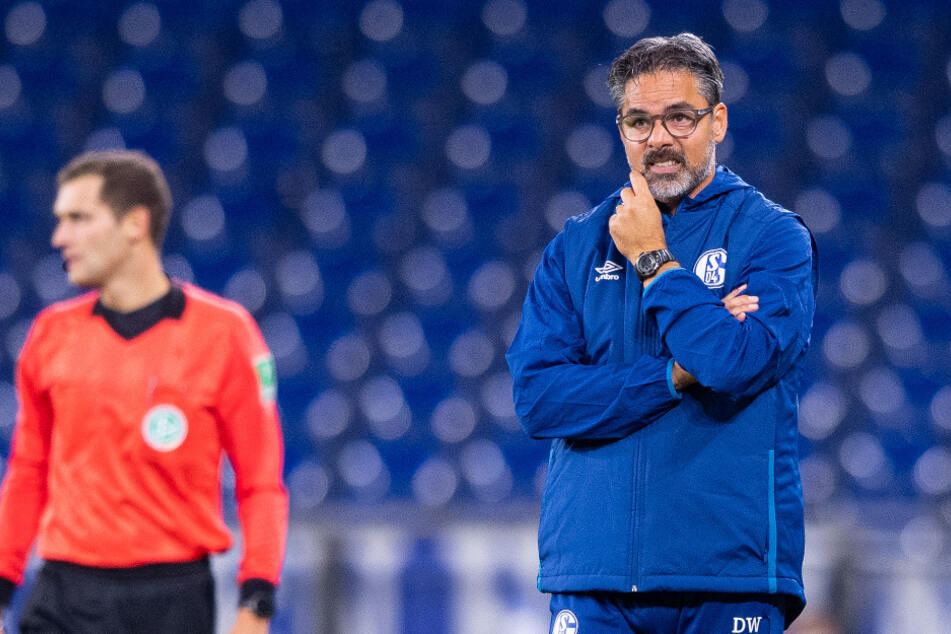 Die 1:3-Niederlage gegen Werder Bremen war zu viel für die Schalke-Bosse: Trainer David Wagner wird den Bundesligisten nicht länger betreuen.