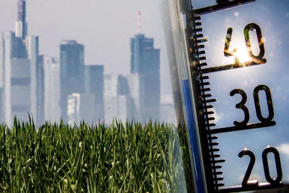 Hessen-Hitze bleibt und Ozon-Werte steigen: Ortsweise kritische Schwelle überschritten