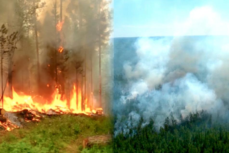 Waldbrände in Russland: Giftiger Rauch bedroht sibirische Stadt