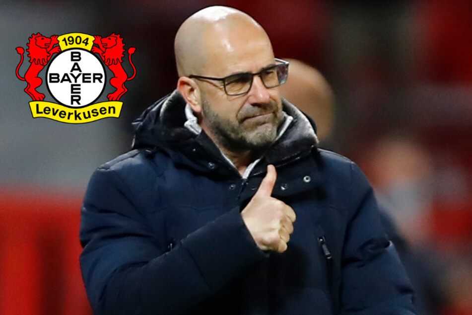"""Bayer Leverkusen: Trainer Peter Bosz hat klare Meinung zu """"Vizekusen"""""""