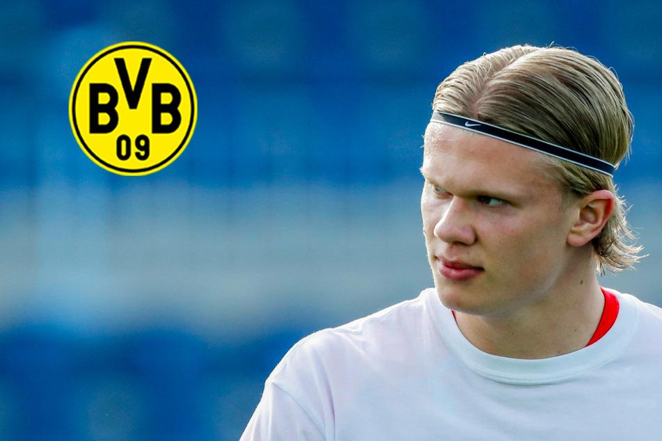 "BVB-Star Erling Haaland harsch kritisiert: ""Hätte sich ins Gesicht geschlagen""!"