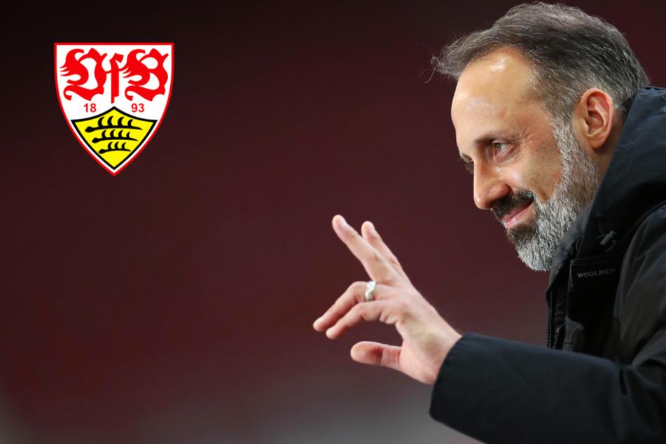 VfB geht dezimiert ins Topspiel gegen Borussia Dortmund