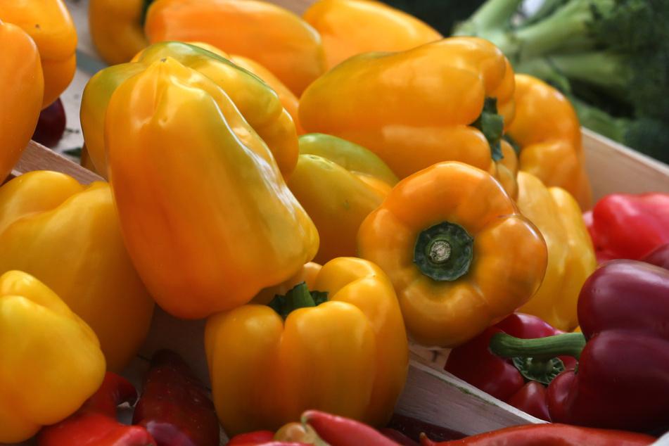Preisexplosion im Gemüseregal: Paprika derzeit so teuer wie nie!