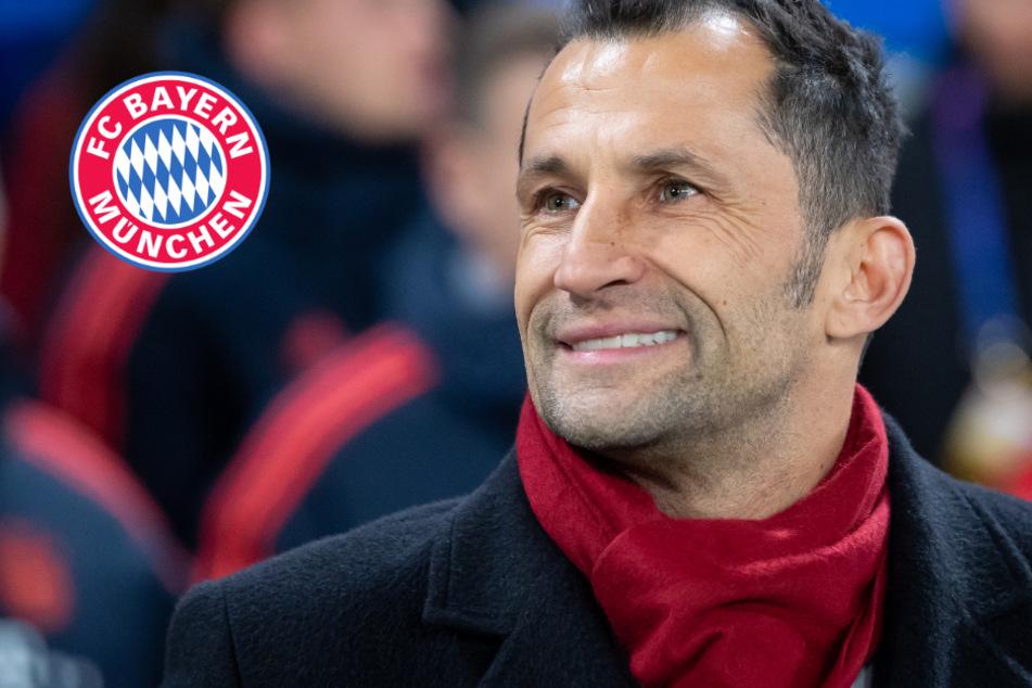 Internationale Top-Transfers: Bayern-Sportchef Salihamidzic hat Großes vor