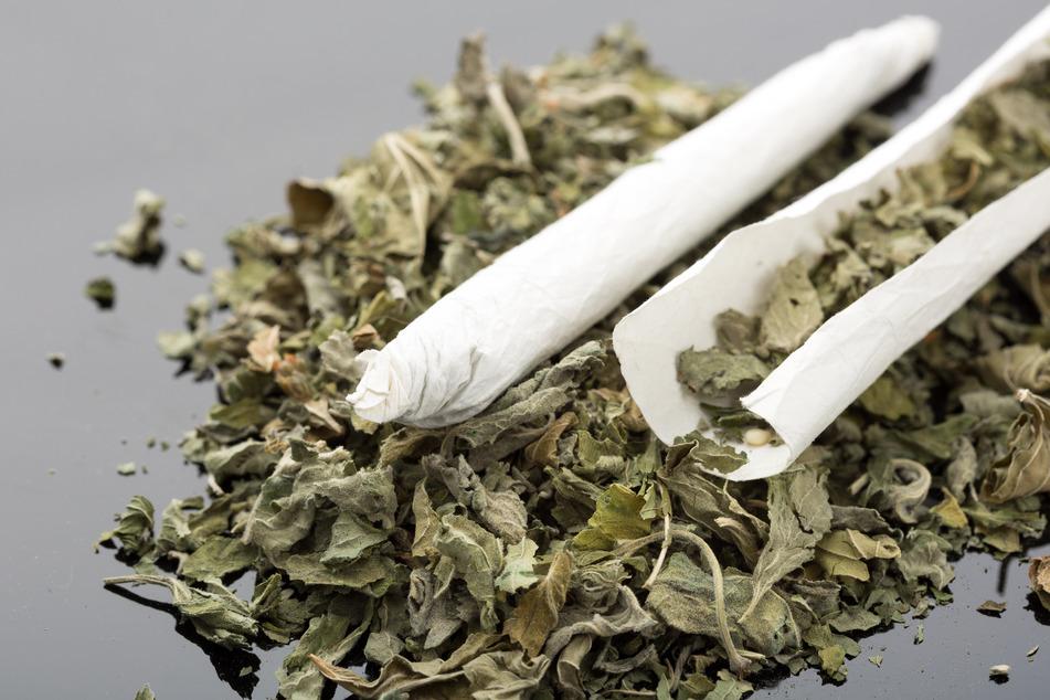 Die Bundespolizei entdeckte das Päckchen in einem Zug im Chemnitzer Hauptbahnhof, darin waren etwa 145 Gramm Cannabis. (Symbolbild)