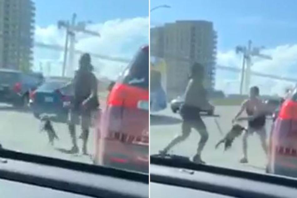 Heftiger Clip zeigt, wie Frau Welpen durch die Luft schwingt und als Waffe einsetzt