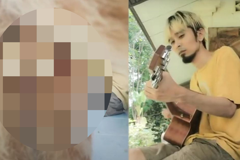 Mann will Song filmen, doch seine Katze blamiert ihn herrlich dreist