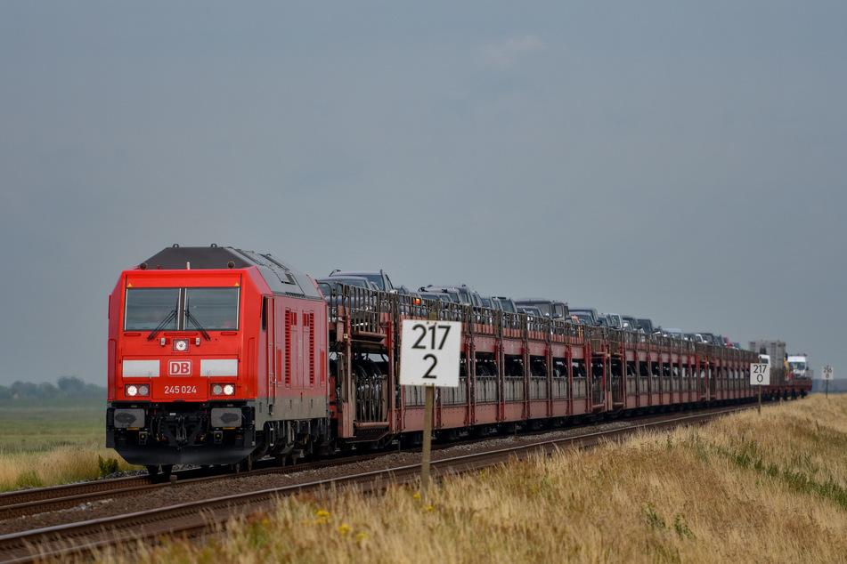 Der Sylt-Shuttle, mit dem von der Deutschen Bahn Autos vom Festland nach Westerland auf Sylt transportiert werden, fährt in der Nähe von Klanxbüll über den Hindenburgdamm. (Archivbild)