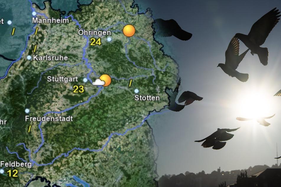 Wetter: In Baden-Württemberg klettern die Temperaturen